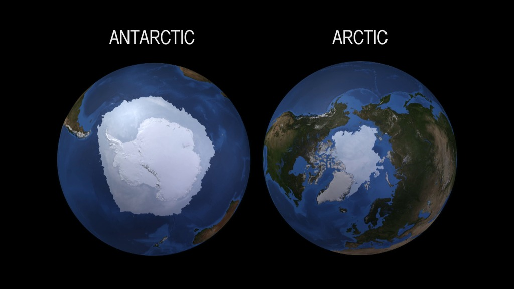 Différence entre l'arctique et l'antarctique 2
