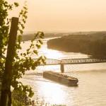 Amadeus Silver Danube - Luftner Cruises 1